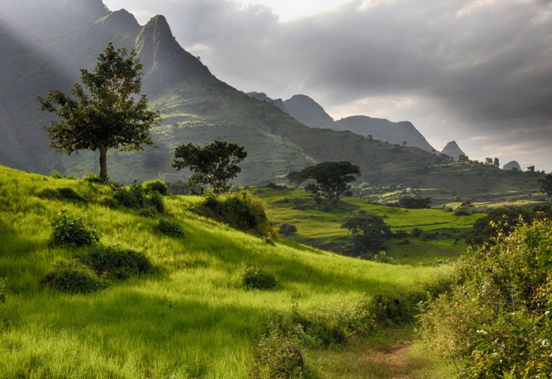 Green fields in Ethiopia with mountain peaks rising behind